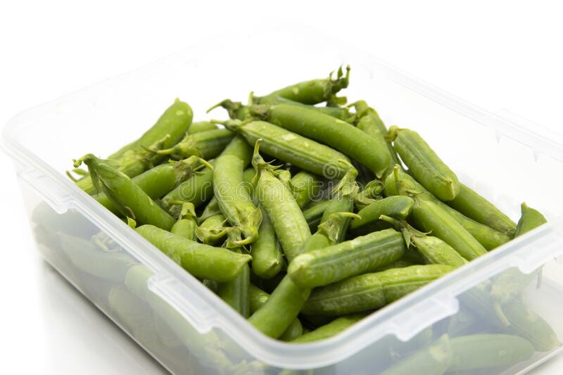 Garden peas in pods freshly picked in a plastic container,  isolated on a white background. stock image