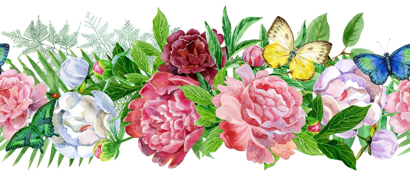 Garden peony, seamless border. Watercolor, hand painted, isolated on white background stock illustration