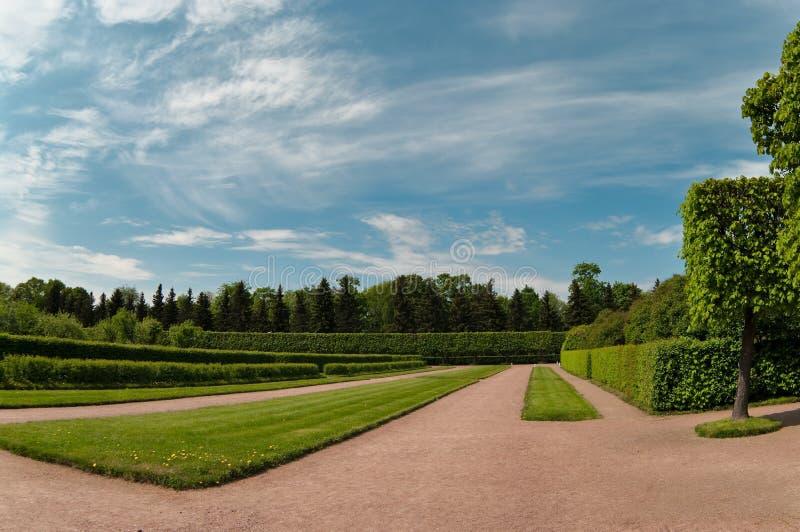Garden in Petergof city stock photography