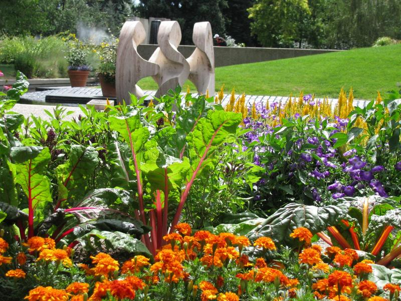 Garden, Plant, Botanical Garden, Flower royalty free stock photo