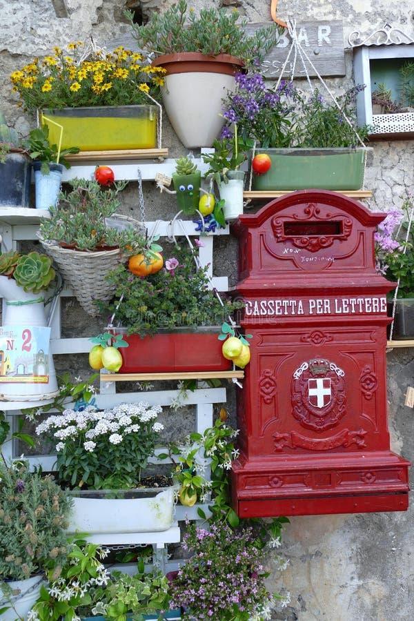 Garden, Plant, Flower, Flowerpot stock images