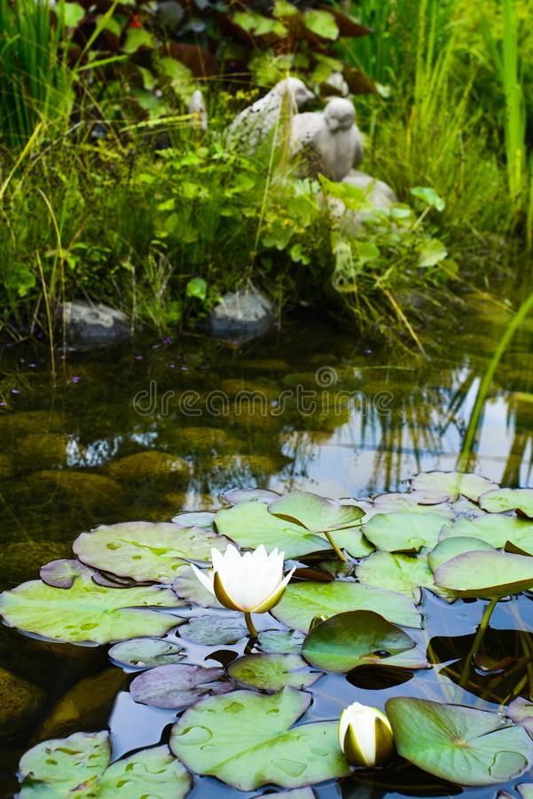 Garden pond with water lilies and ceramic sculpture royalty free stock photo