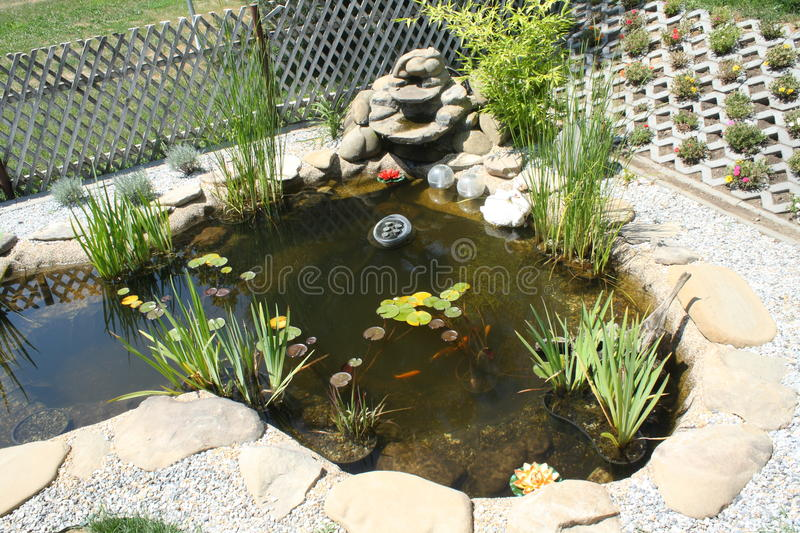 Garden pond with waterfall stock photo