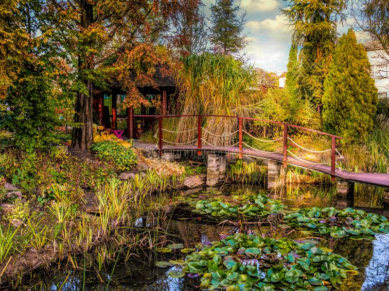 Garden with pond and wooden bridge royalty free stock images