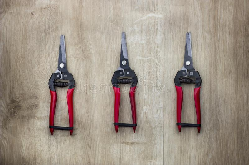 Garden pruner or scissors with red handles on wooden table stock image