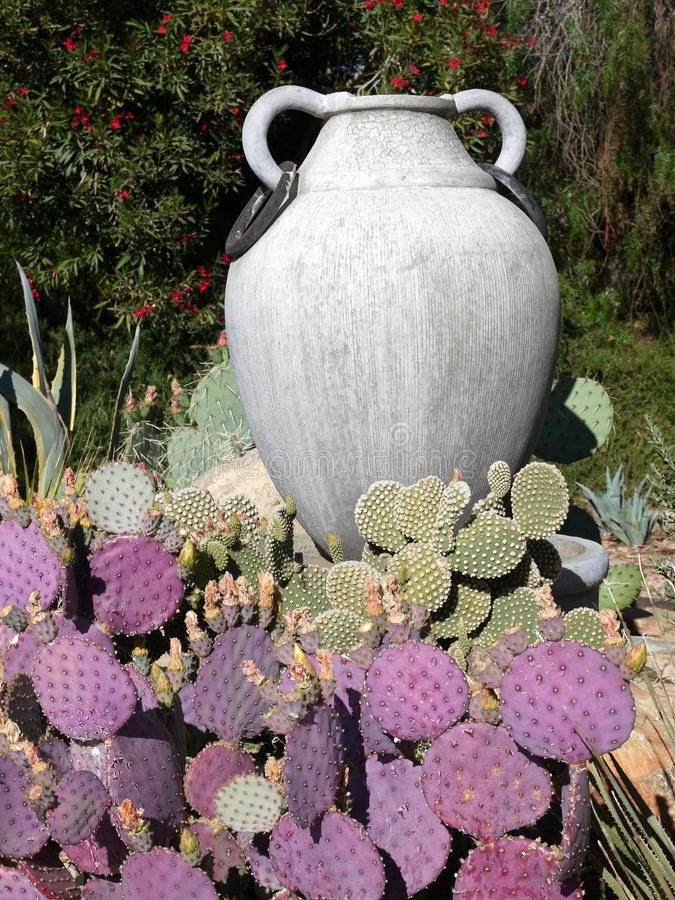 Download Garden: Purple Cactus With Urn Stock Photo - Image: 19719014