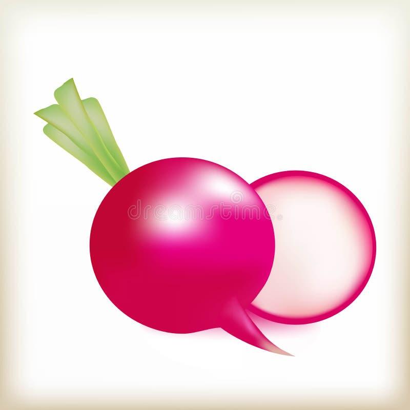 Garden radish garden, the radish isolated a root crop a vector, food fresh, vegetable of red color. The radish of pink color, tasty garden vegetable, fresh juicy vector illustration