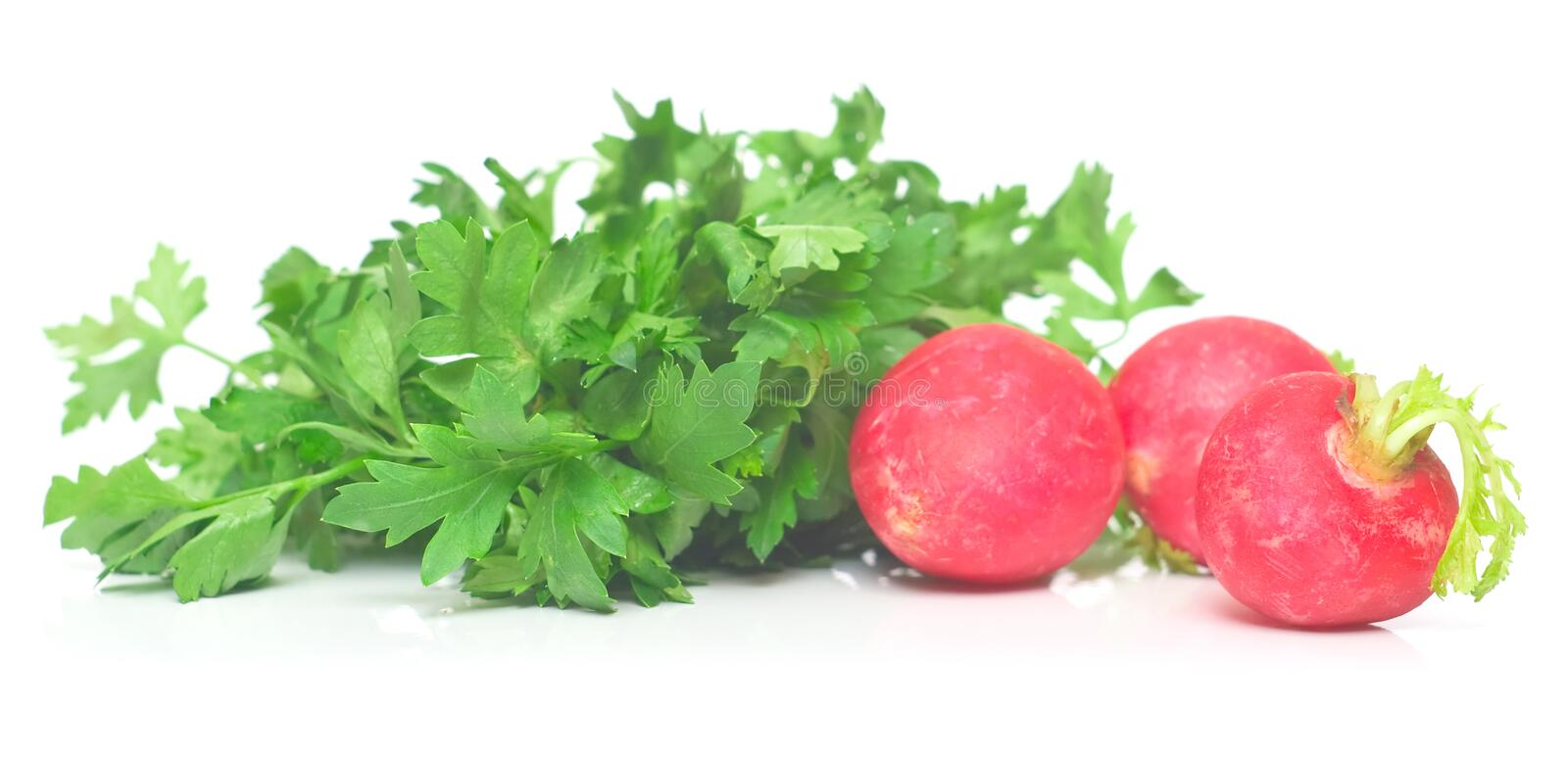 Download Garden radish and parsley stock image. Image of tasty - 5023401
