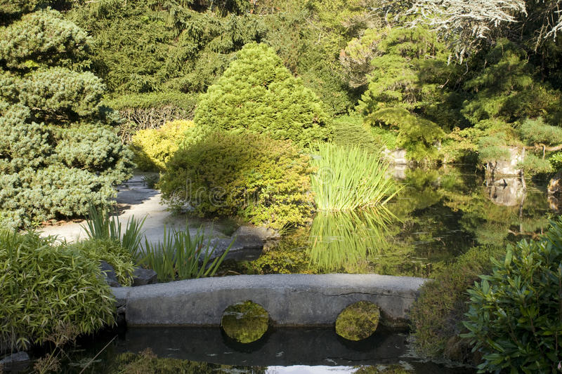 Download Garden with reflection stock photo. Image of enlightenment - 26563482