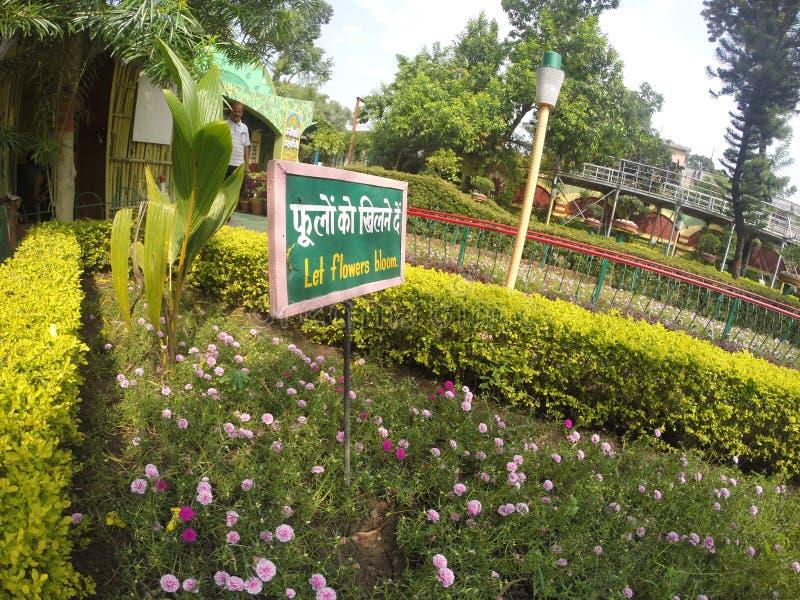 Garden on rishikesh, india. Flowers stock images