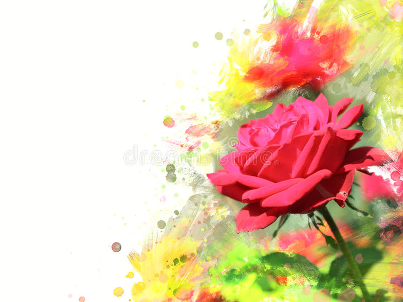 Garden rose. Close-up of garden rose.Watercolor effect stock image