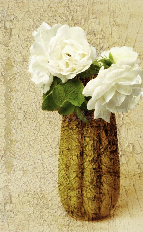 Garden rose textured stock image