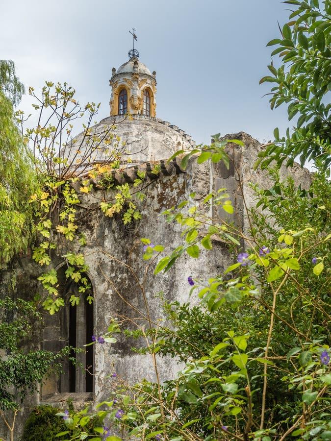 In The Garden Of San Francisco Church In Tavira, Portugal Stock ...