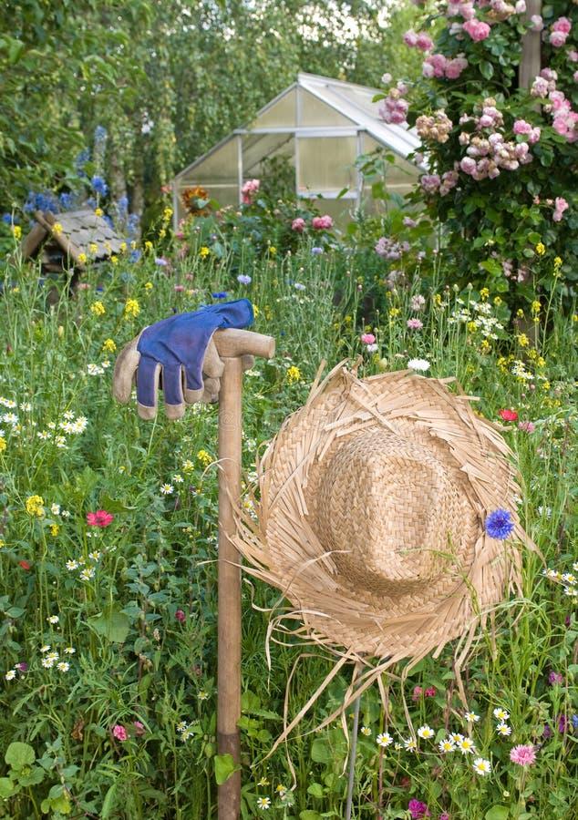Download Garden Scene Stock Image - Image: 15199781