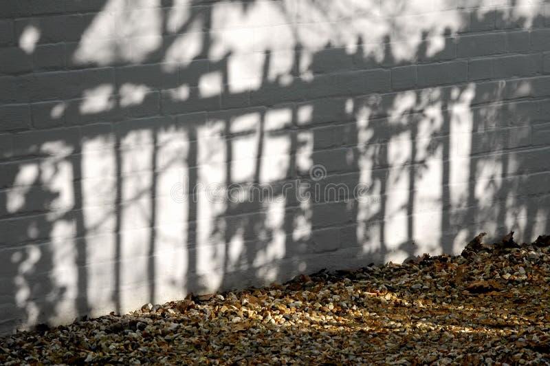 Garden shadows royalty free stock photo