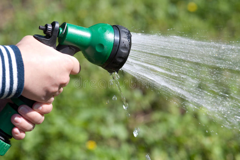 Download Garden shower stock image. Image of flower, pouring, spraying - 14612205