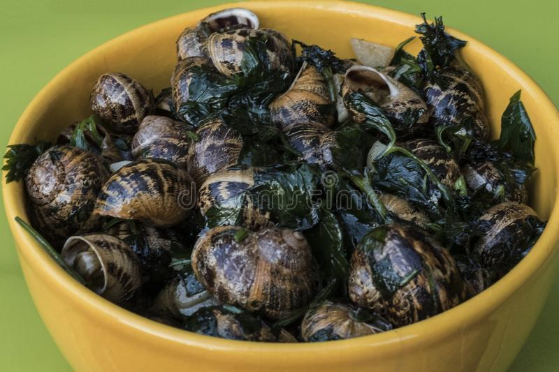 Garden snails cooked French style in butter with parsley and garlic, in a yellow ceramic bowl on a green table.  stock photography