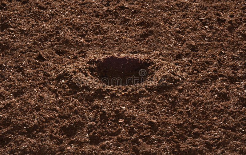 Download Garden Soil stock image. Image of agriculture, ground - 18498871