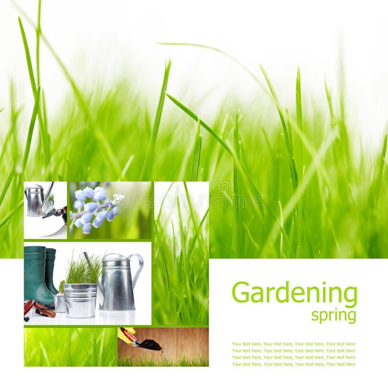 Garden and spring