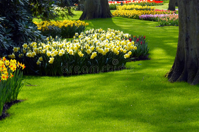 A garden in spring stock images