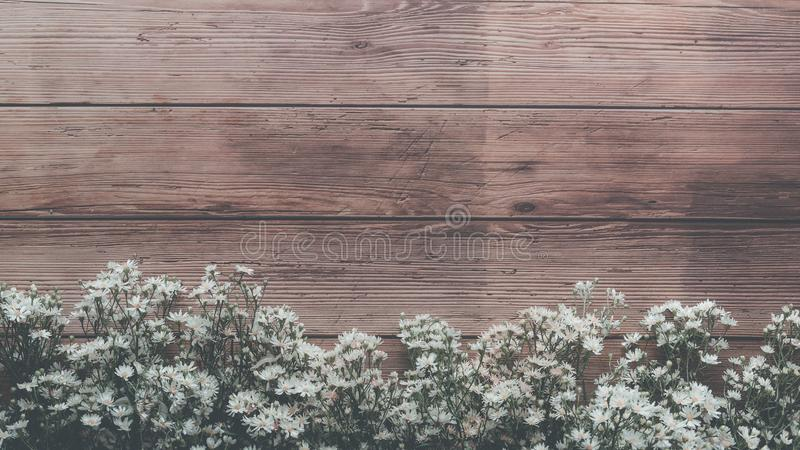 Garden spring white tiny flowers on wooden plank table background with copy space, retro color style. Garden spring white tiny flowers on wooden plank table stock image