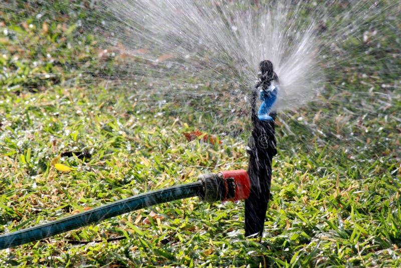 Download Garden Sprinkler stock photo. Image of garden, hose, sprinkle - 25753190