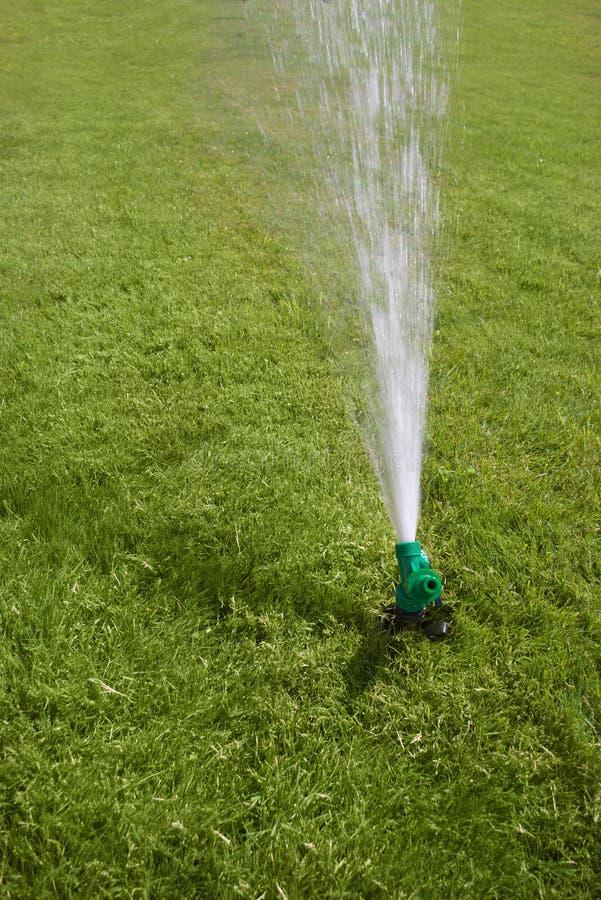 Garden sprinkler stock photography