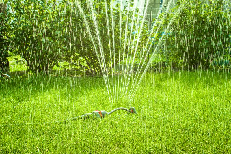 Garden sprinkler on summer day royalty free stock image
