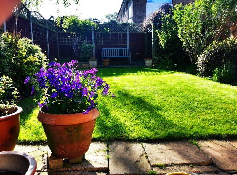 Garden stillness stock images
