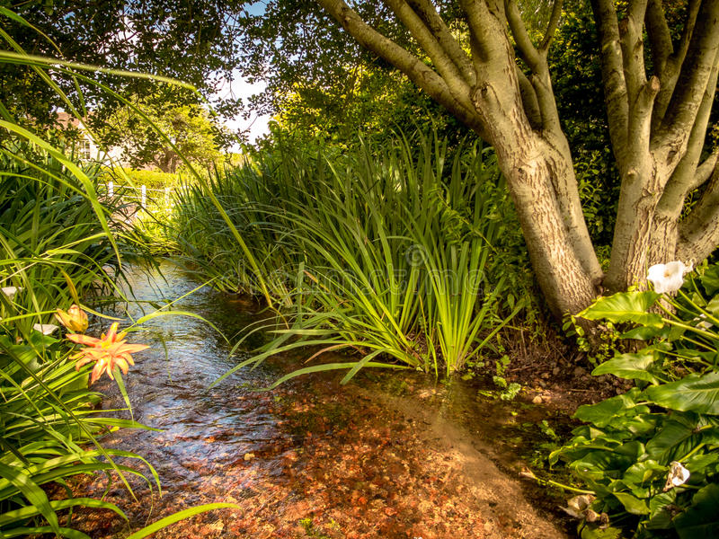 Garden Stream stock photos