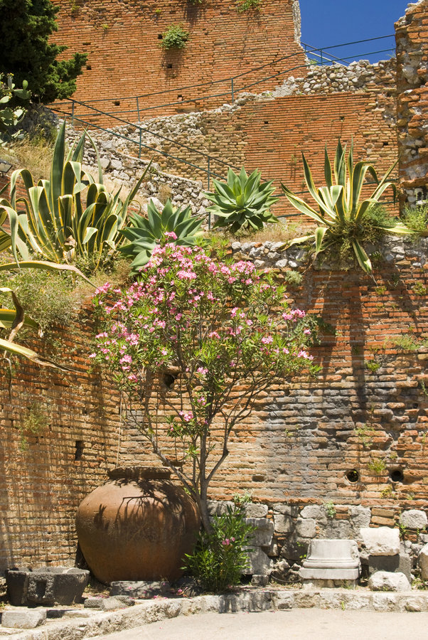 Download Garden taormina sicily stock photo. Image of typical, vase - 2891224