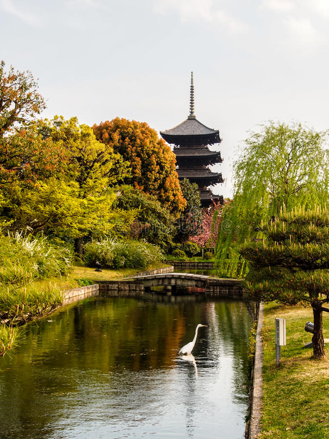 Download Garden Of Toji Temple With Blue Sky, Kyoto, Japan Stock Photo - Image: 31567764