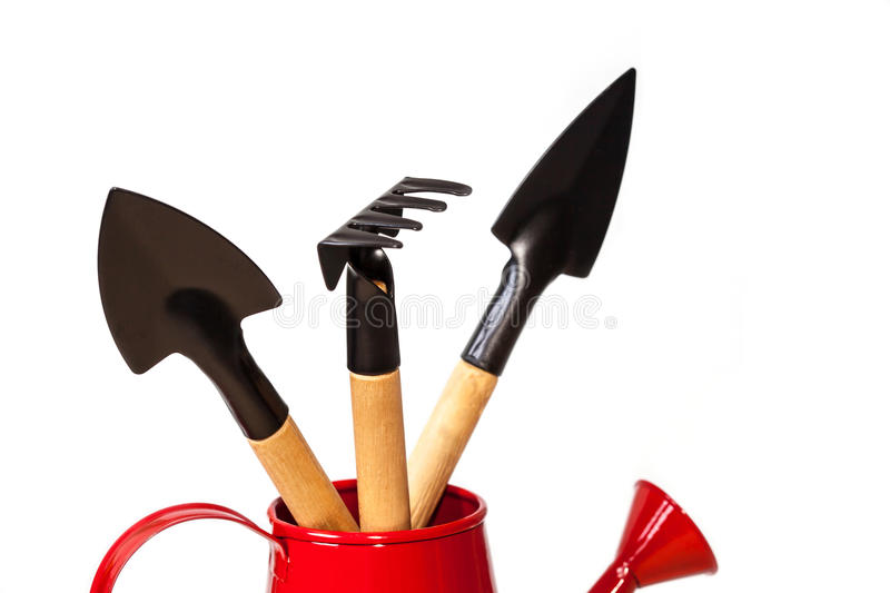 Garden tool in red watering can. Garden tool in red watering can on white royalty free stock photography