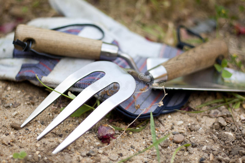 Garden Tools. Stainless steel trowel and rake and a pair of gloves stock image