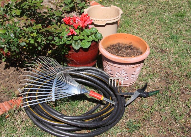 Garden tools. And plants in garden stock photos