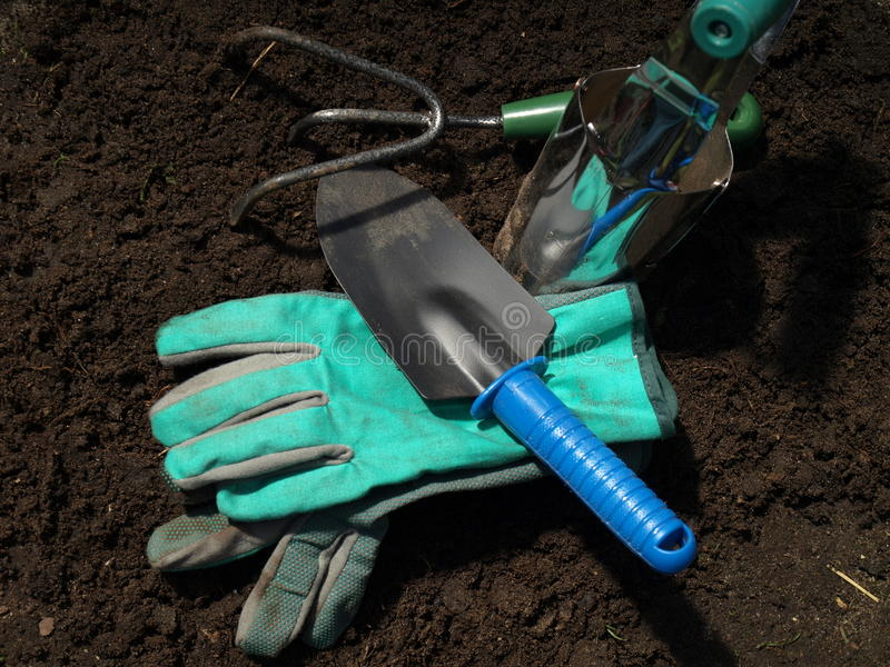 Download Garden tools stock photo. Image of gloves, claw, tool - 24541194