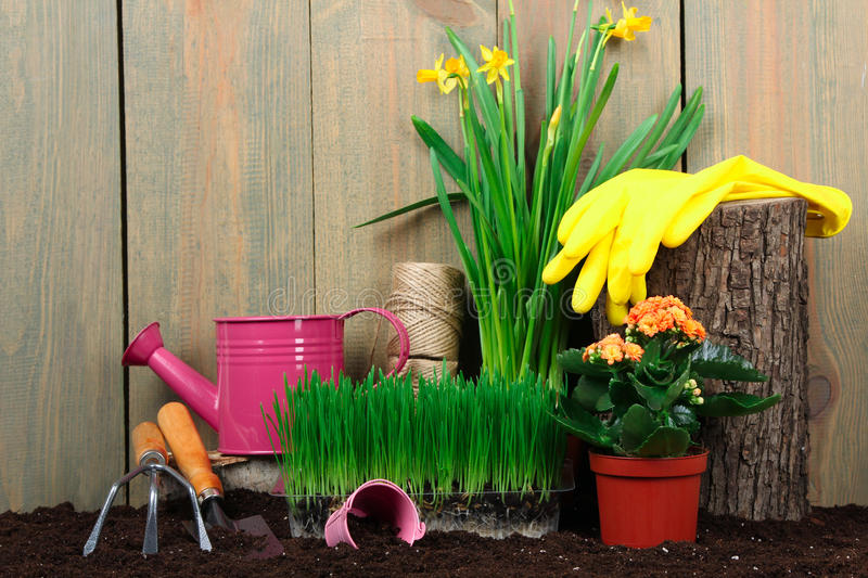 Garden tools. With grass and flowers on sackcloth on wooden background stock images