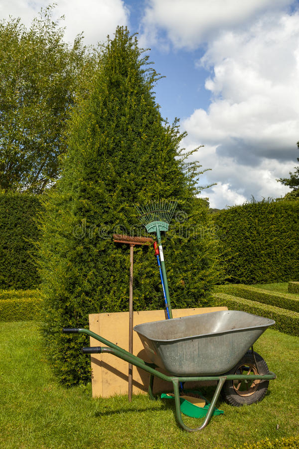 Garden tools leaning upright against a yew tree stock photos