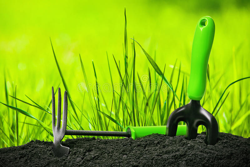 Garden tools. On natural background stock images