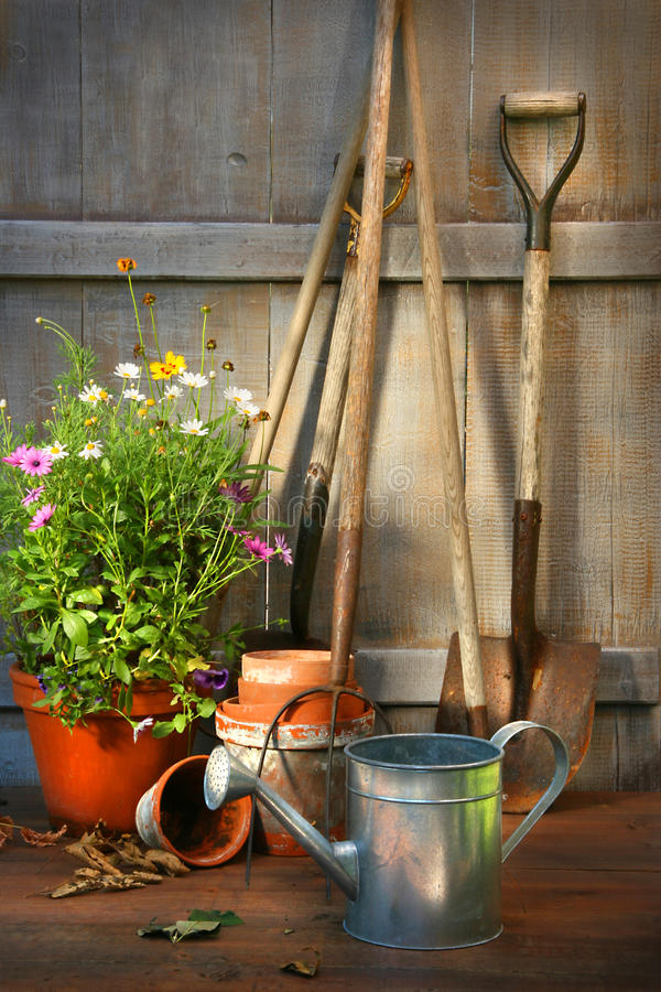 Garden tools and a pot of summer flowers in shed stock photo