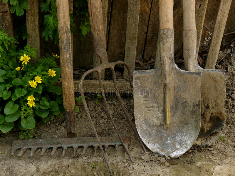 Garden tools. Some garden tools near old wooden fence royalty free stock image
