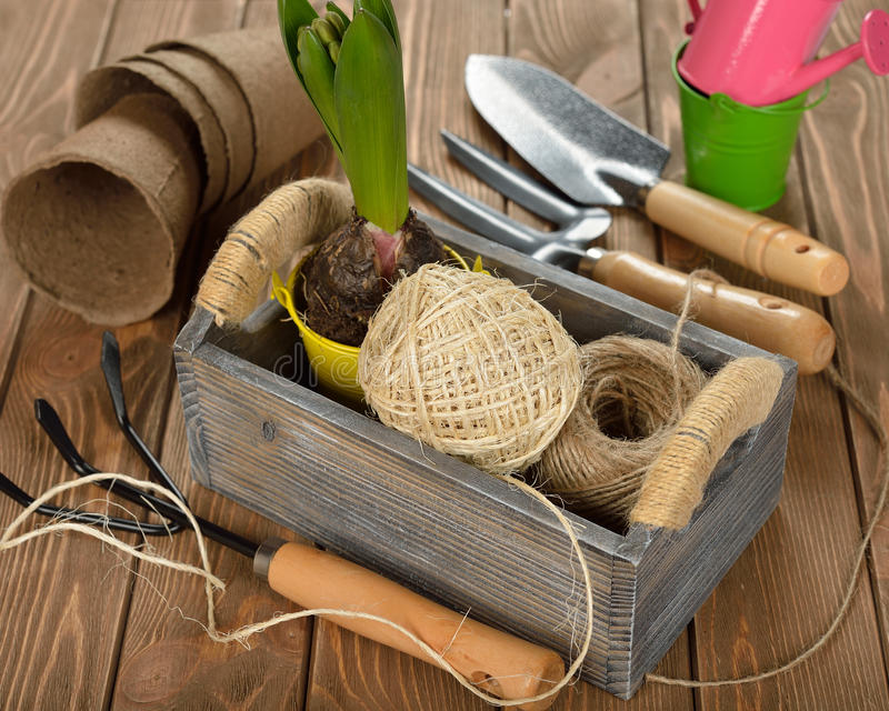 Garden tools. In a wooden box stock photography