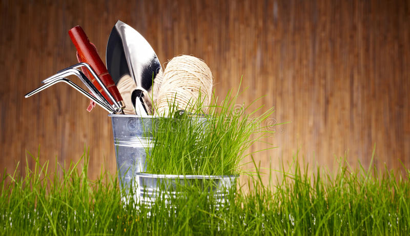 Download Garden Tools On Wooden Wall Stock Image - Image: 18629899