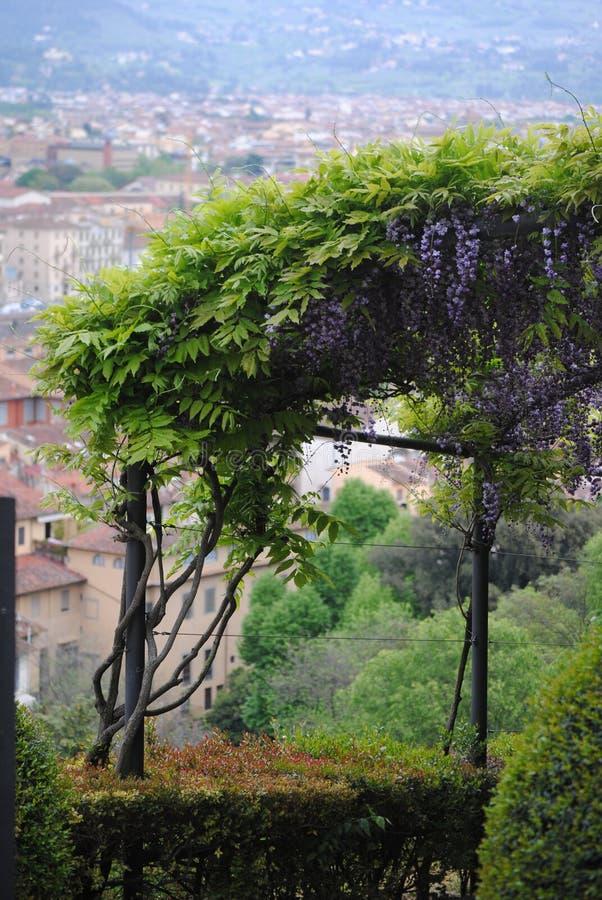 Garden on the top of Florens royalty free stock photos