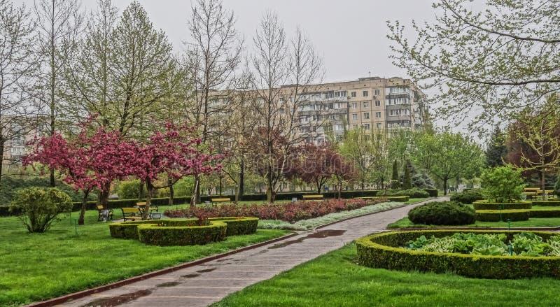 Garden, Tree, Plant, Botanical Garden stock photography