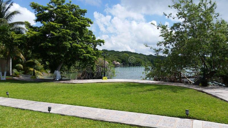 Garden vacation bacalar mexico lagoon stock photography