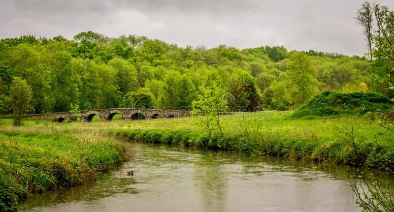 Garden of vaux-le-vicomte castle. Garden and river of vaux-le-vicomte castle in France royalty free stock image