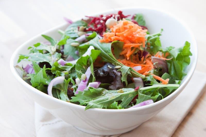 Garden vegetable salad royalty free stock photos