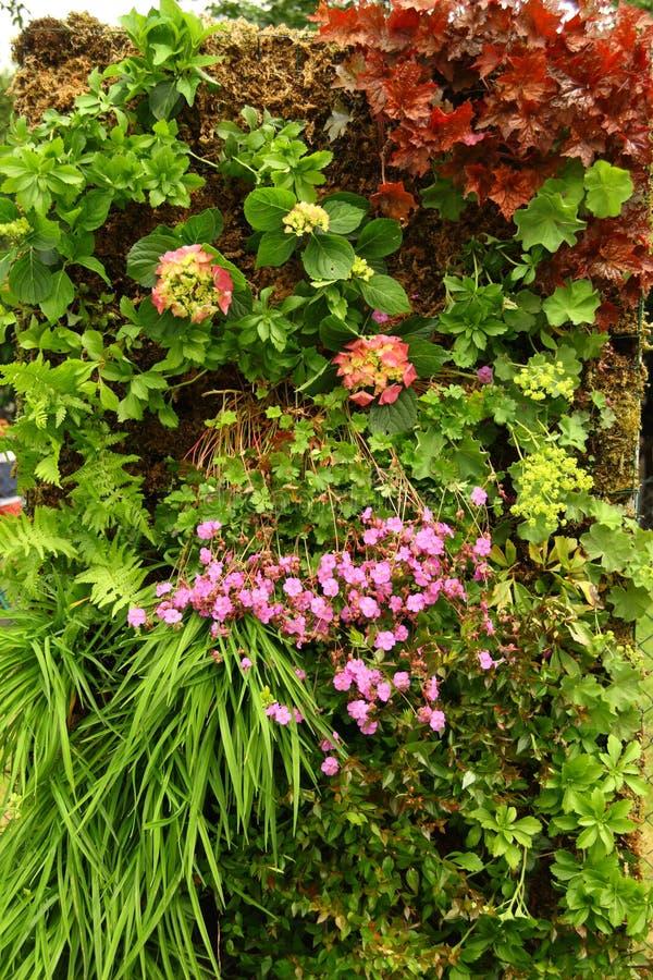 Garden vertical stock photography