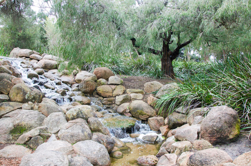 Garden Waterfall at King's Park. Trickling rocky waterfall feature at King's Park Botanic Garden with lush green plants in Perth, Western Australia stock photos